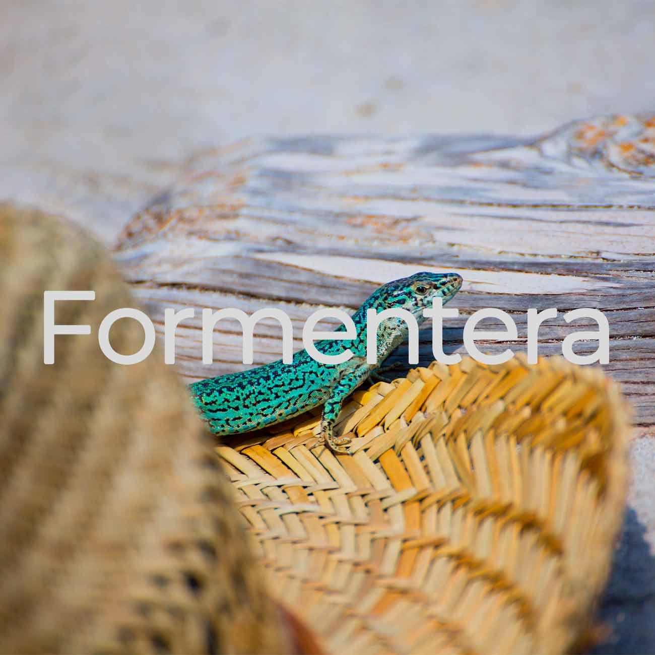 Destination Management Company Formentera